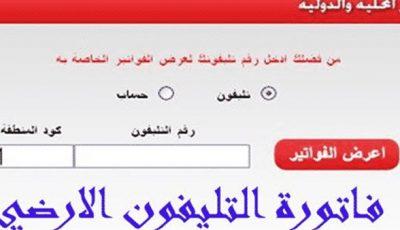 خطوات تسديد فاتورة التليفون الأرضي 2020 اون لاين المصرية للاتصالات