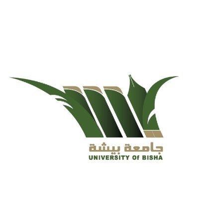 وظائف جامعة بيش