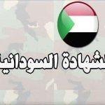 تعرف على نتيجة شهادة الأساس السودانية 2019 باستخدام رقم الجلوس