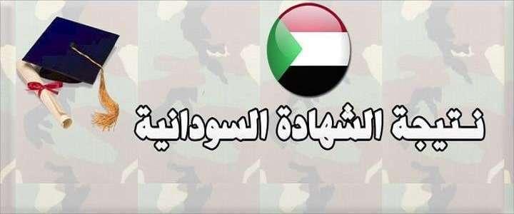 تعرف على نتيجة شهادة الأساس السودانية 2020 باستخدام رقم الجلوس