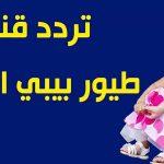 تردد قناة طيور بيبي الجديد 2019 على النايل سات