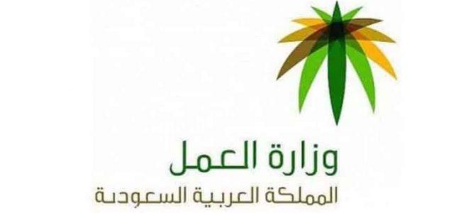طرق الاستعلام عن رقم سداد رخصة العمل من خلال وزارة العمل والتنمية السعودية