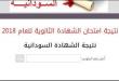 نتائج الشهادة الثانوية السودانية 2019 موقع وزارة التربية والتعليم