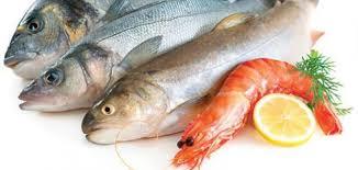 افضل انواع السمك في السعودية والخليج العربي