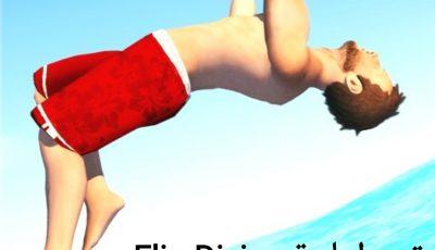 أشهر العاب الفيديو المجانية (لعبة Flip Diving) وطريقة تحمي