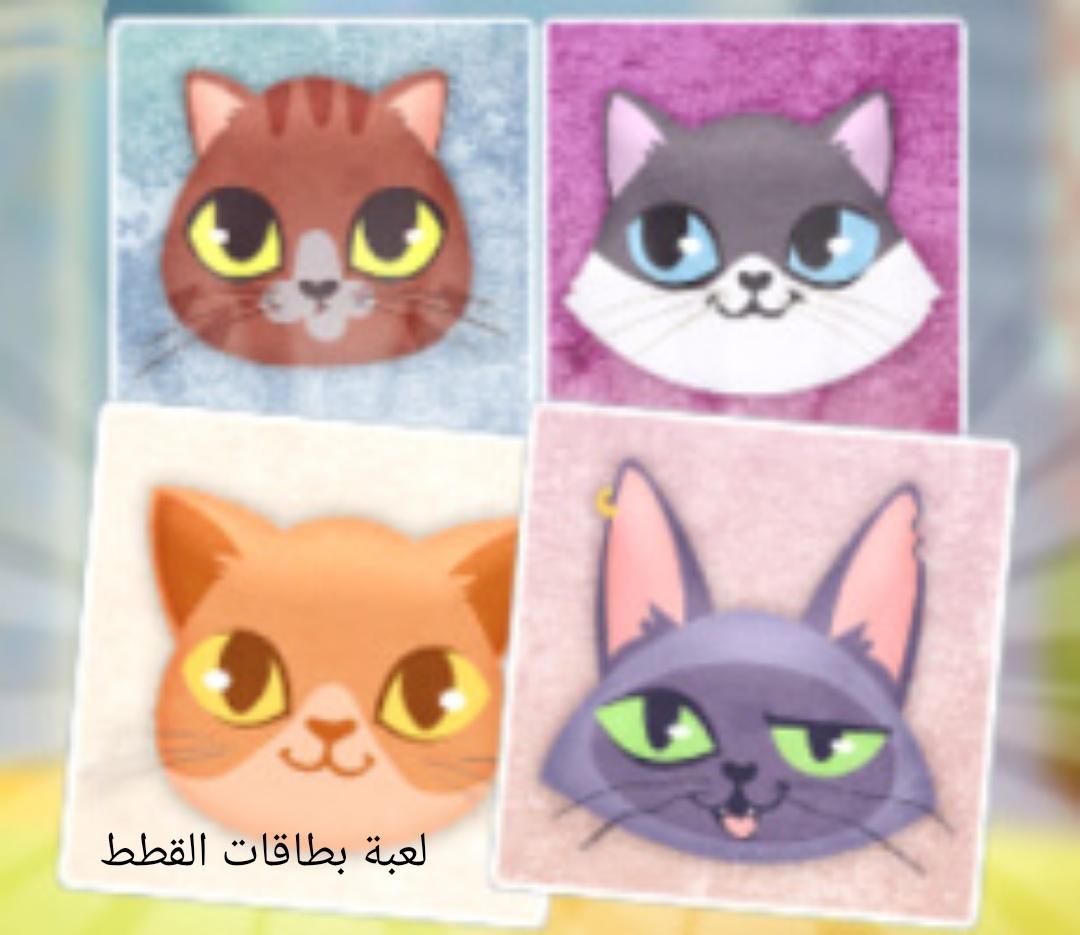 لعبة بطاقات القطط العاب اطفال