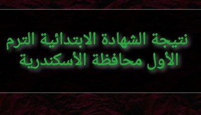 نتيجة الشهادة الابتدائية الترم الأول 2021 محافظة الأسكندرية