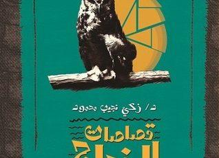 تلخيص كتاب قصاصات الزجاج للكاتب زكي نجيب محمود