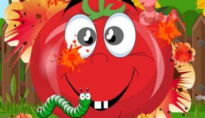 لعبة إنفجار الطماطم العاب الغاز اونلاين مجانية Tomato Explosion