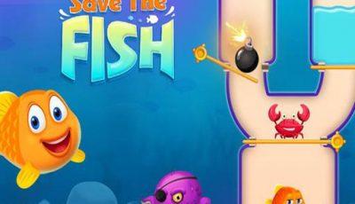 لعبة إنقاذ السمكة العاب مغامرات اونلاين مجانية Save The Fish 1
