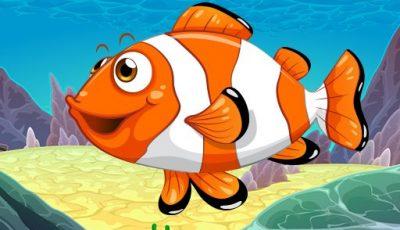 لعبة لغز حوض السمك العاب الغاز اونلاين مجانية Aquarium Puzzle